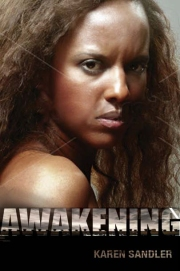 Pages from Awakening covers-4-1