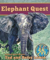 main_elephantquest_cover