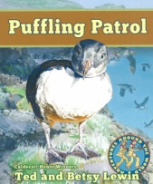 main_pufflingpatrol_cover